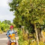 Pai Motorbike Ride to Mor Paeng Waterfalls