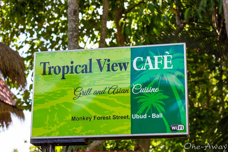 Monkey Forest Street - Tropical View Café